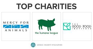 Top Charities | Animal Charity Evaluators