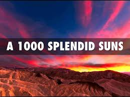 splendid suns by david brewer