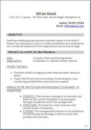 How To Be Perfect  Resume Fudging
