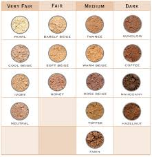 Image result for range of skin colours