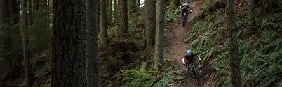 2019 new 29er carbon full suspension mtb mountain bike