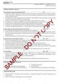 executive cv examples   the cv storefree cv review