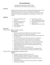 waitress cv example for restaurant bar livecareer food server job description