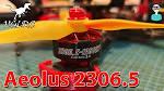 <b>HGLRC Aeolus 2306.5</b> 1900KV Motor - Thrust Tests & Flight Footage