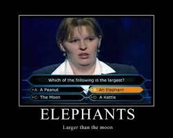Funny Quotes For Work. QuotesGram via Relatably.com