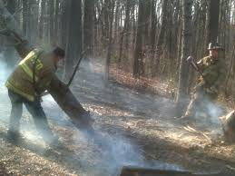 wildland or why i don t want to be a firefighter in california even just the small amount of shoveling raking and cutting that we had to do was pretty exhausting that wildland stuff is for the birds tell the guys