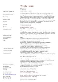 cv resume examples to   for