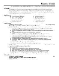 skill example for resume example resume skills section resume    resume  skill example for resume example resume skills section resume templates site dzk obwo example