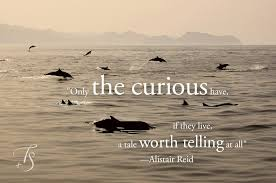 The best travel quotes, part one   Luxury Hotels TravelPlusStyle via Relatably.com