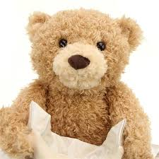 <b>Plush</b> Peek a Boo <b>Talking Teddy Bear</b>