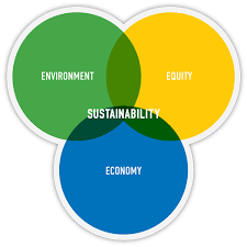 core values   exo environmentalsustainability venn diagram