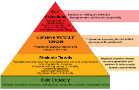 The Strategic Bird Conservation Framework