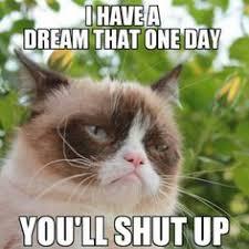 Grumpy Cat Stuff on Pinterest | Grumpy Cat, Grumpy Cat Meme and ... via Relatably.com