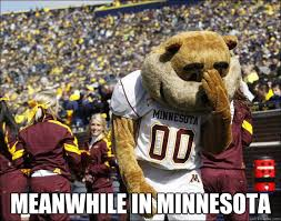 Meanwhile in minnesota - Disillusioned Gopher - quickmeme via Relatably.com