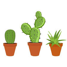 Vector Illustration <b>Green Cactus</b> And <b>Aloe</b> In A Pot Isolated On ...