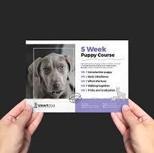 puppy school flyer template v brandpacks puppy school flyer template v2