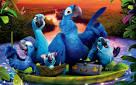 Rio 2 cast parrots pictures birds <?=substr(md5('https://encrypted-tbn3.gstatic.com/images?q=tbn:ANd9GcSBMxDAKdCMbvhetr2BoJpdqlKYh2UP9YNR29nkiDTgO6NGBH6nO83ELYdd'), 0, 7); ?>