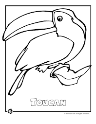 Small Picture Printable Coloring Pages Rainforest Animals Coloring Pages