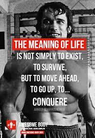 FunMozar – Arnold Schwarzenegger Quotes