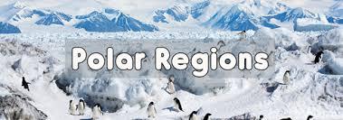 Image result for polar regions