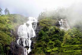 Image result for Munnar