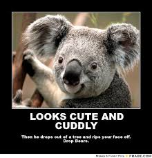 LOOKS CUTE AND CUDDLY... - Koala Meme Generator Posterizer via Relatably.com