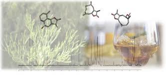 Non volatile constituents of the vermouth ingredient Artemisia ...