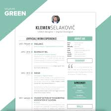 your cv project get your cv or resume designed for templates cv blue jpg templates cv green jpg
