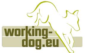 Bildergebnis für working dog