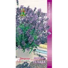 """Отзывы о <b>Семена лаванды декоративной</b> Поиск """"<b>Услада</b>"""""""