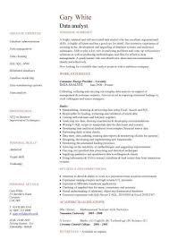 good cv template pdf   irs form availabilitygood cv template pdf carer cv template dayjob it cv template cv library technology job description