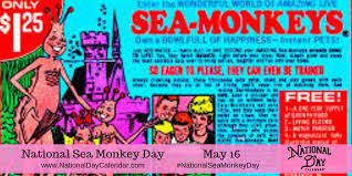 NATIONAL SEA MONKEY DAY - May 16 - National Day Calendar