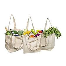 Best Canvas Grocery Shopping Bags - Canvas ... - Amazon.com
