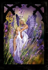 Image result for images of the lavender flower fairy