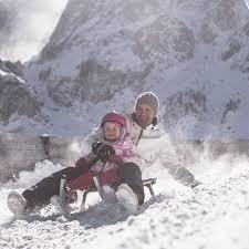 <b>Reindeer</b> feeding • 3 Zinnen Dolomites