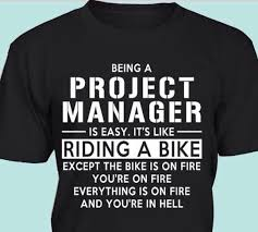 Diary of an it project leader a case study on project management     Busy market essay   FC  Diary of an it project leader a case study on project management leadership