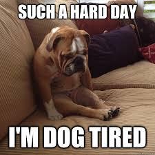 Such a hard day I'm dog tired - depressed dog - quickmeme via Relatably.com