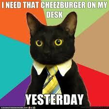 Memes : Random Funny Picture | Funny Pictures | Funny Pics | Crazy ... via Relatably.com