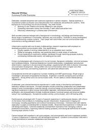 resume examples of profile resume profile examples  seangarrette cographic software engineer resume profile examples impression resume engineering skills examples   resume examples of profile