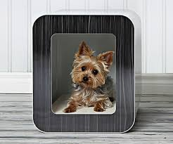 12 inspiration gallery from the best of luxury dog crates furniture style dog crates