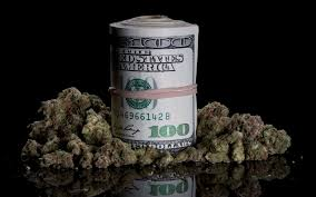poll which pot job is your calling high times pot jobs cannabusiness money and marijuana