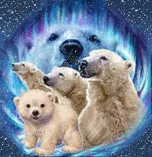 """Résultat de recherche d'images pour """"Gifs les ours blancs"""""""