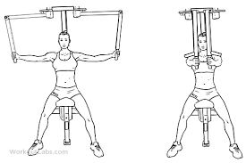 Image result for chest fly machine