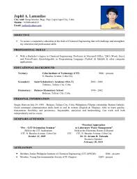 resume form for job application cipanewsletter sephora job application resumes tips