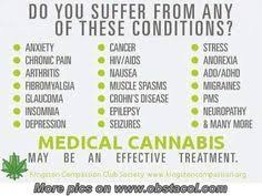 Funny Weed Quotes on Pinterest | Weed Quotes, Stoner Quotes and ... via Relatably.com
