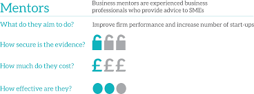 business advice toolkit mentors what works centre for local what are they and what do they aim to do
