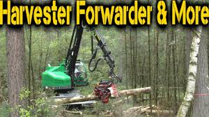 Neuson Forest 242 HVT & Waratah H414 - KWF 16 - YouTube