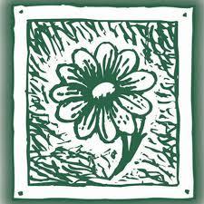 Campanula bertolae Colla - Flora Vascolare della valle d'Aosta