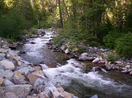 Image result for pics of gold in a mountain stream