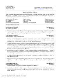 math tutor sample resume cipanewsletter online mathematics tutoring resume s tutor lewesmr